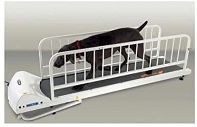 GOPET PR725 Dog Treadmill