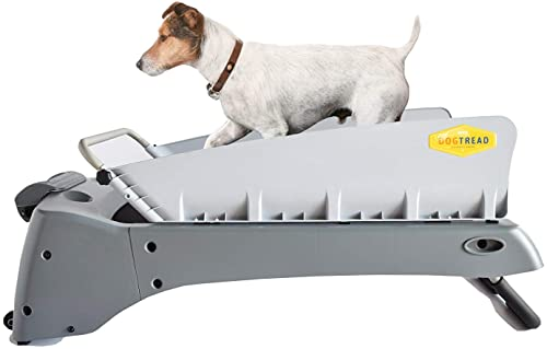 DogTread Premium Small Dog Treadmill