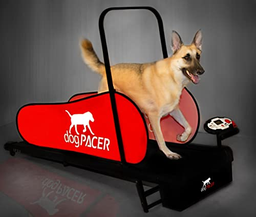 dogPACER LF 3.1 Folding Dog Treadmill